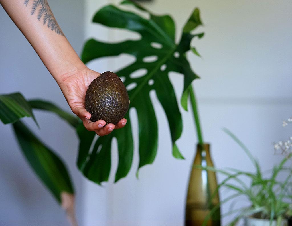 Avocado und Kokosmilch Deep-In-Conditioner für Afrohaare